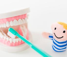 歯の模型と男の子